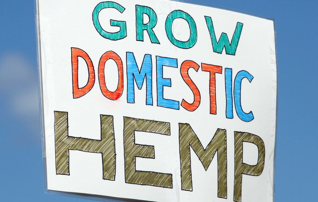 Grow Domestic Hemp