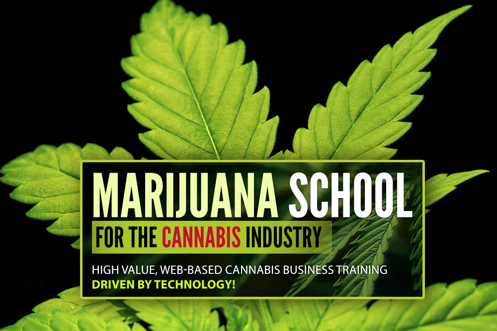 Green CultureED Online Cannabis Education