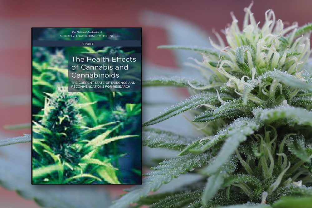 National Academy of Sciences issues report on Health Effects of Cannabis and Cannabinoids