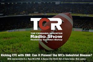 Kicking CTE with CBD: Can It Prevent the NFL's Industrial Disease?