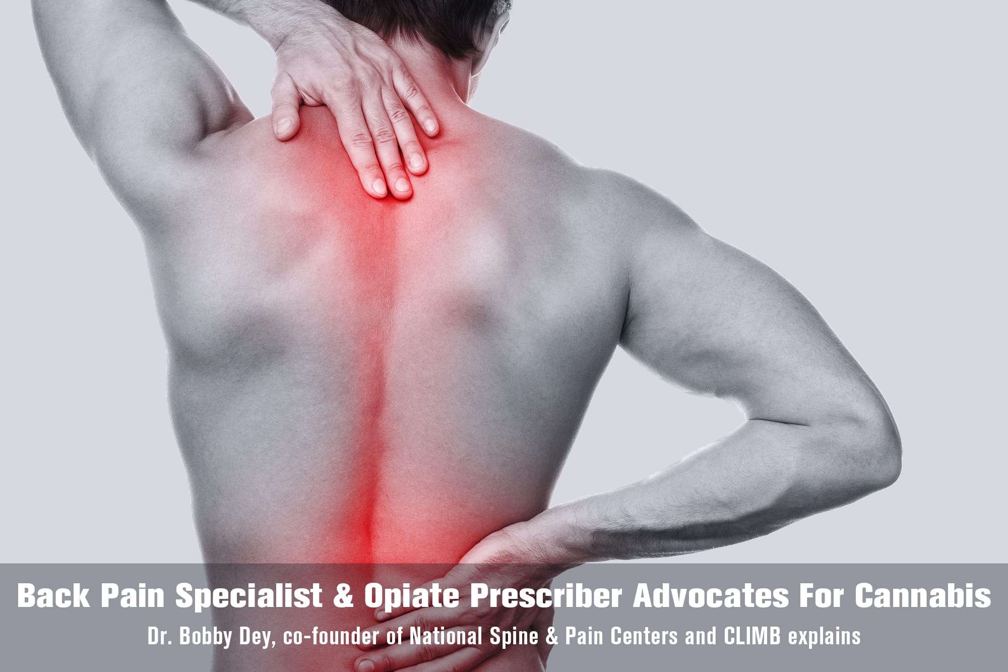 back pain specialist opiate prescriber advocates for cannabis