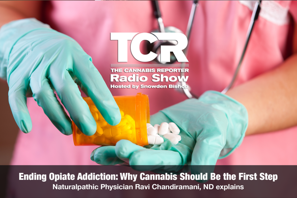 Ending Opiate Addiction - Why cannabis should be the first step - the cannabis reporter radio show hosted by snowden bishop with Dr. Ravi Chandiramani