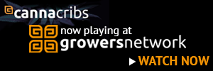 Canna Cribs now playing at Growers Network