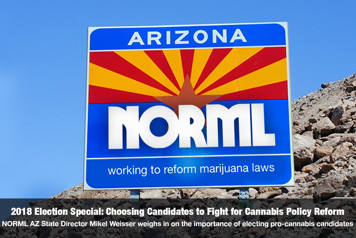 2018 Election Special: Choosing Candidates to Fight For Cannabis Policy Reform with Arizona NORML State Director Mikel Weisser on The Cannabis Reporter Radio Show hosted by Snowden Bishop