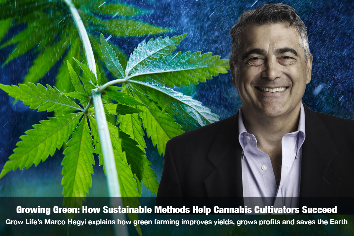 Growing Green: How Sustainable Methods Help Cannabis Cultivators Succeed with Marco Hegyi on The Cannabis Reporter Radio Show hosted by Snowden Bishop