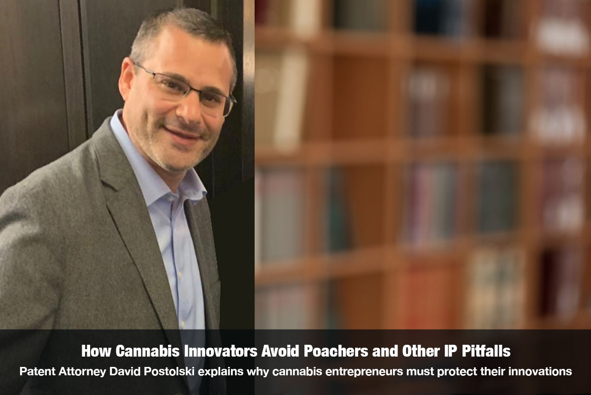 How Cannabis Innovators Avert Poachers & Other Pitfalls by Protecting Intellectual Property Interview with David Postolski on The Cannabis Reporter Radio Show hosted by Snowden Bishop